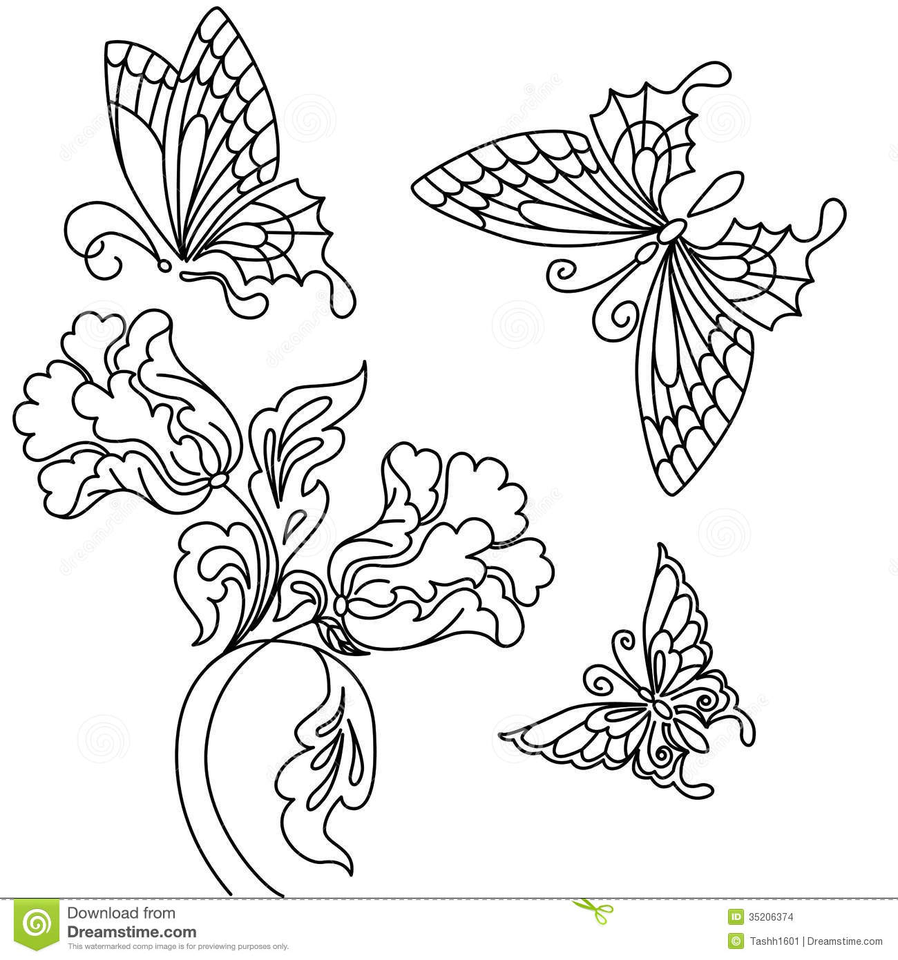 Flowers And Butterfly Stock Illustration Image Of Drawing