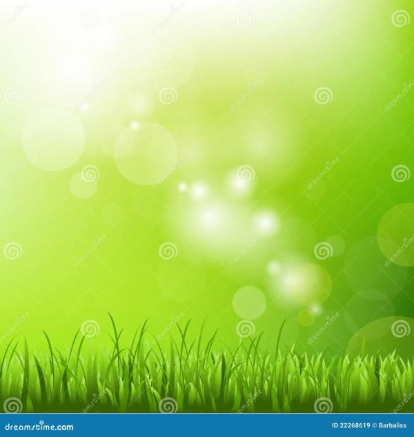 Fond Vert Avec La Tache Floue Et L'herbe Images libres de ...