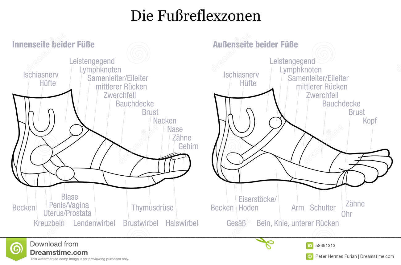 Foot Reflexology Side Profile View Description German