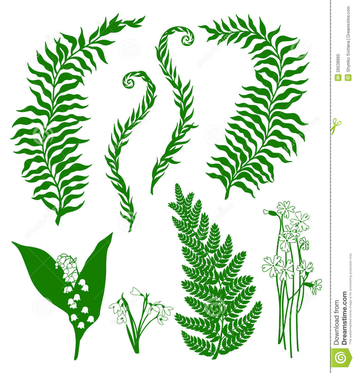 Medicinal plants as an ecosystem service. Forest Plants Stock Vector Illustration Of Stem Herbarium 26538965