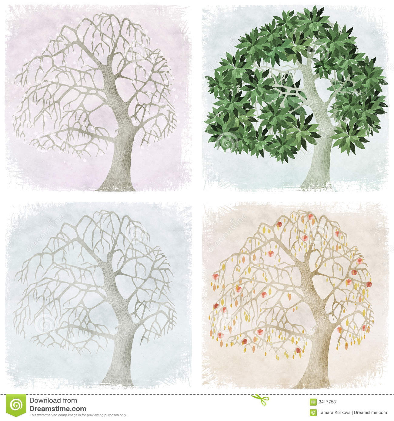 Four Seasons Of Apple Tree Stock Illustration Image Of Change