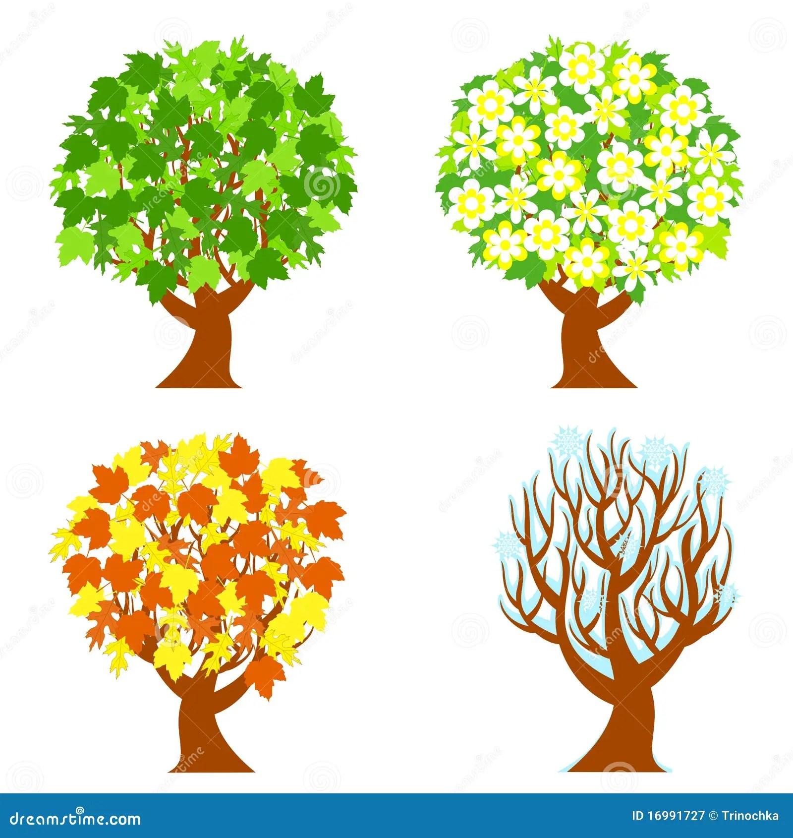 Four Seasons Trees Stock Vector Illustration Of Yellow