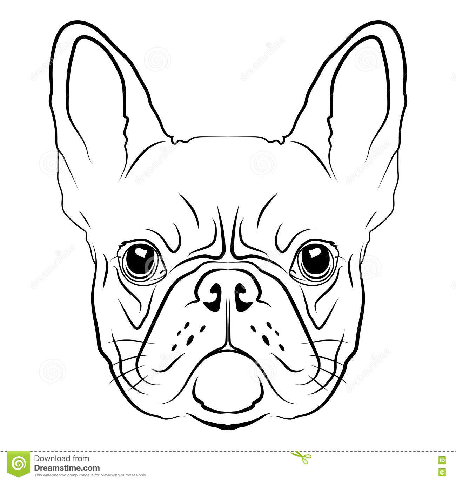 Bulldog Head Logo Royalty Free Stock Image