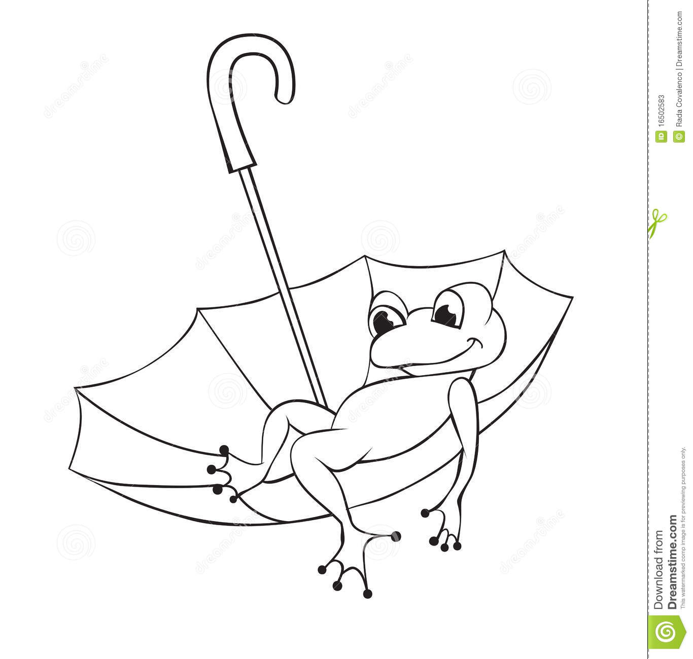 Frog And Umbrella Stock Vector Illustration Of Contour