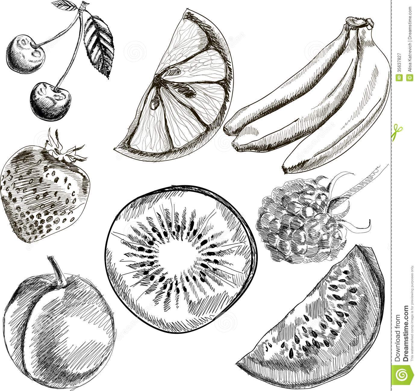 Fruit Doodles Seamless Vector Royalty Free Stock