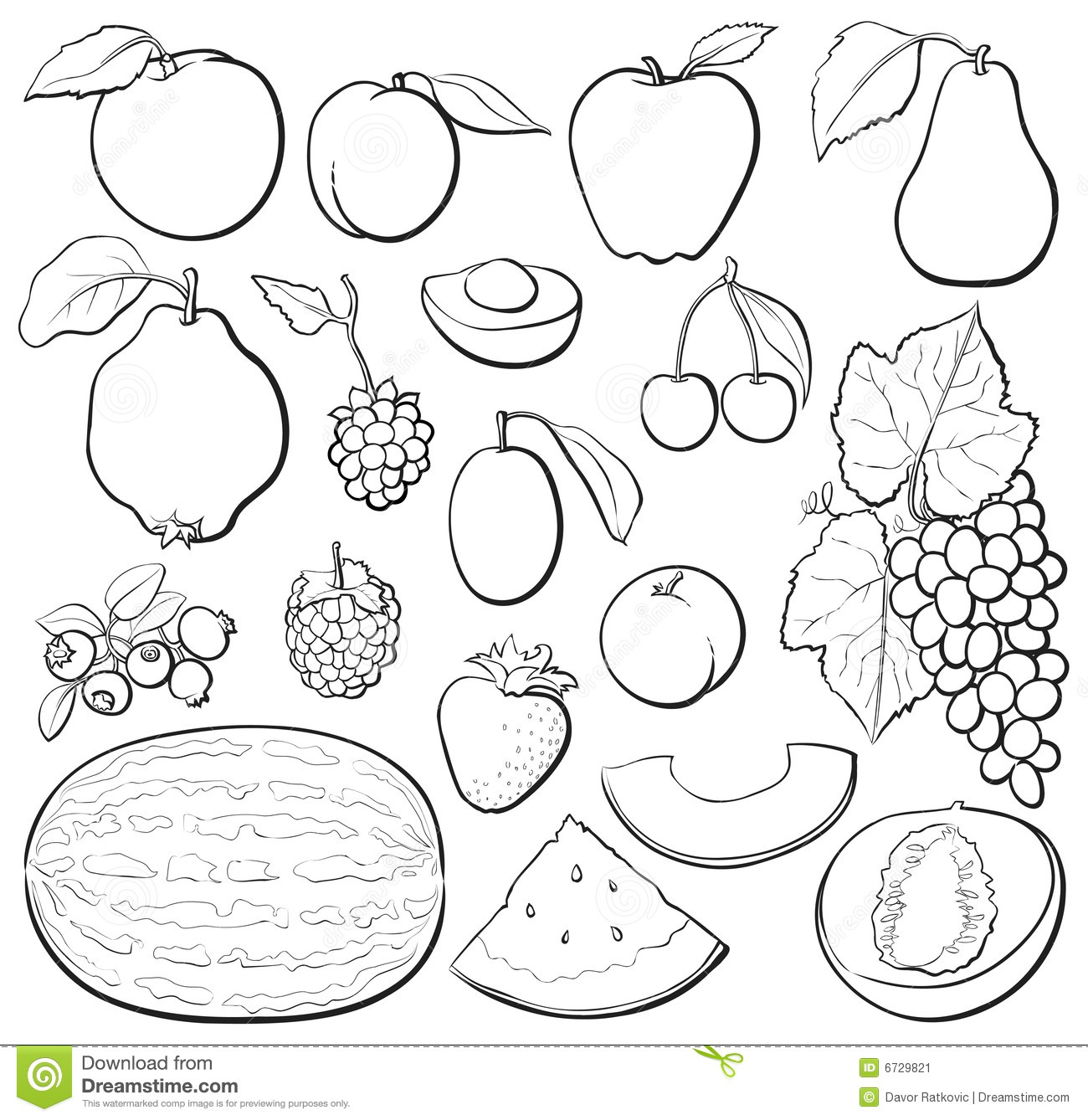 Fruit Set B Amp W Stock Vector Illustration Of Blueberry