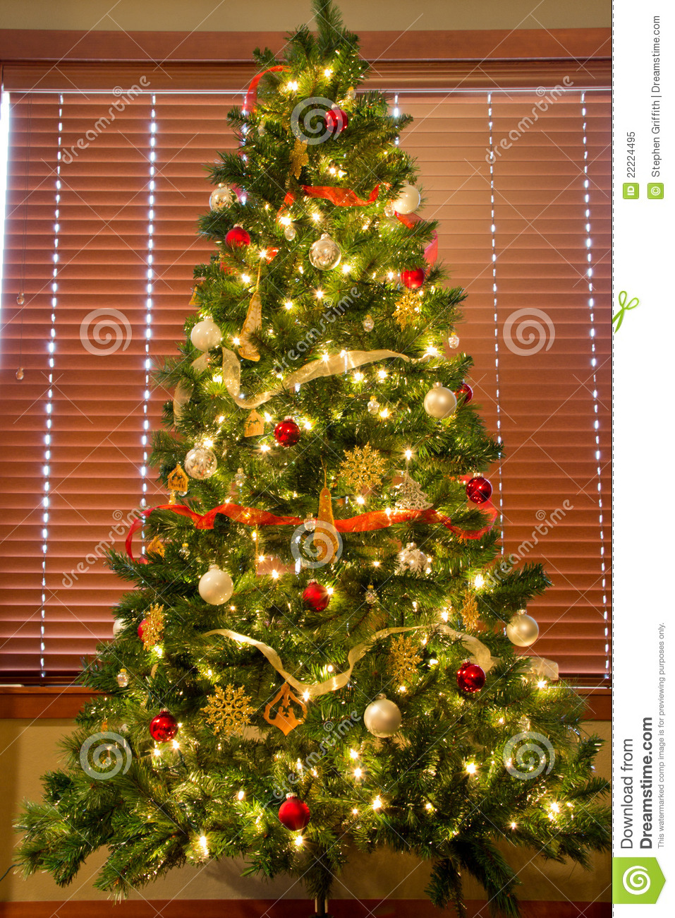 Full Christmas Tree In Front Of Blinds Royalty Free Stock