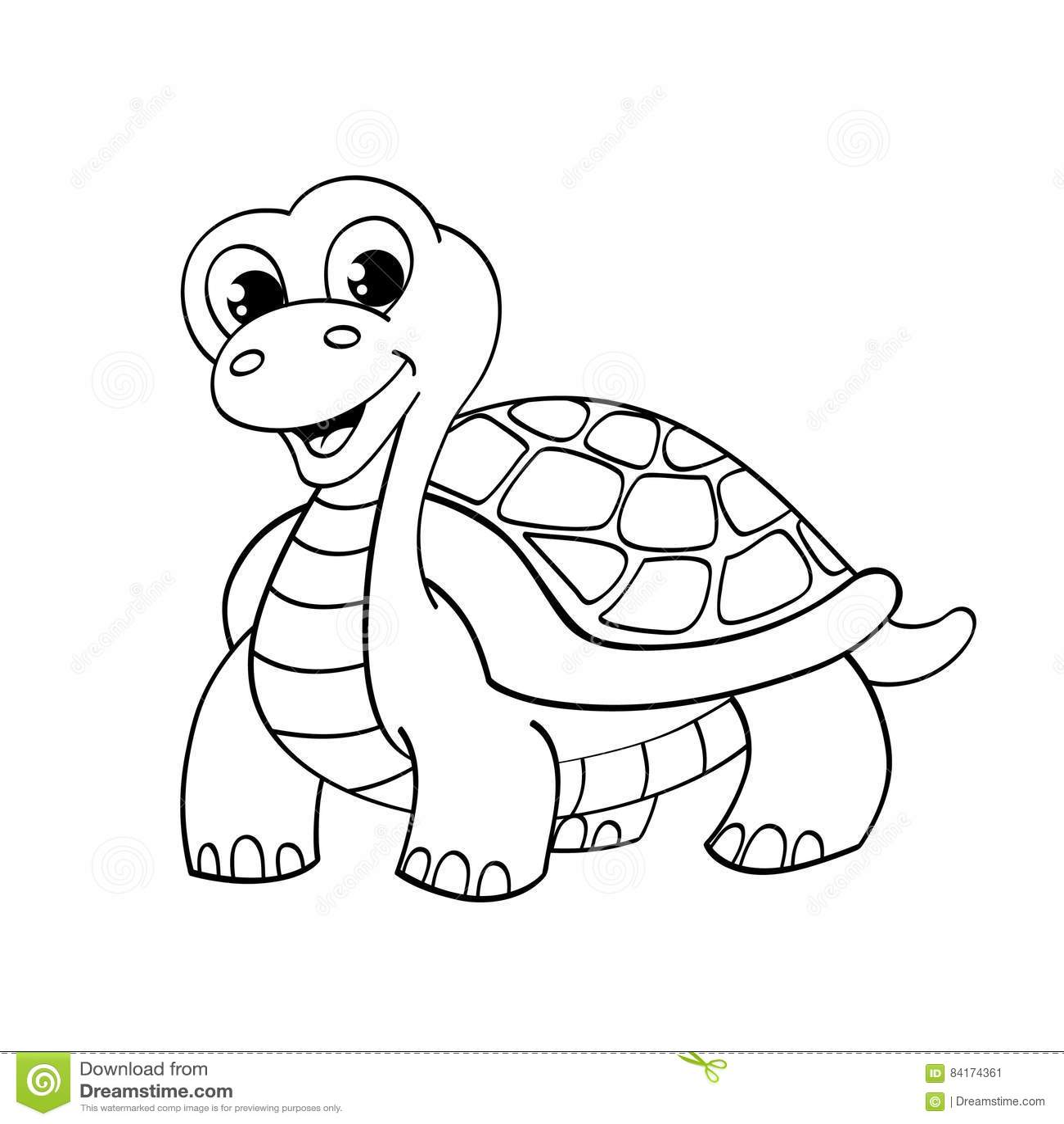 Funny Cartoon Turtle Stock Vector Illustration Of White
