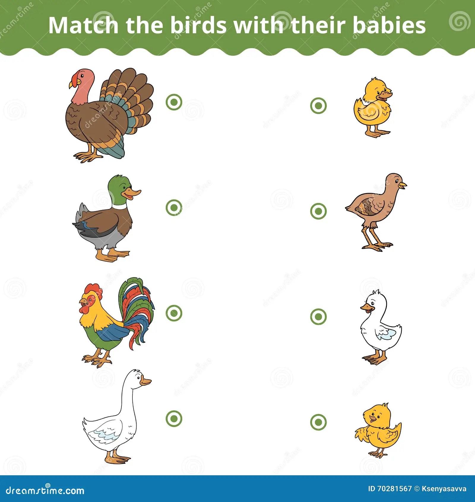 Gioco Di Corrispondenza Per I Bambini Gli Uccelli Dell Azienda Agricola Ed I Bambini