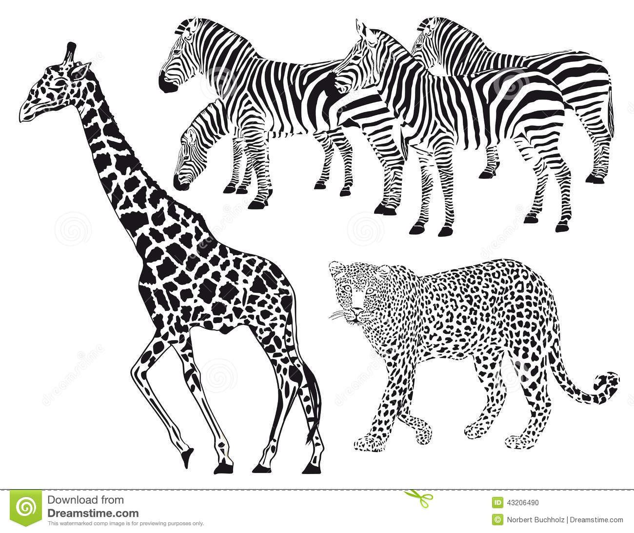 Giraffe With Leopard And Zebras Stock Vector