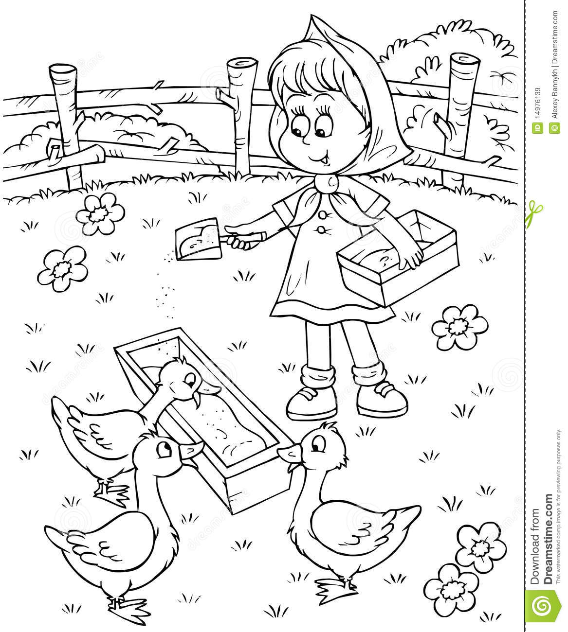 Girl Feeds Ducks Stock Illustration Illustration Of