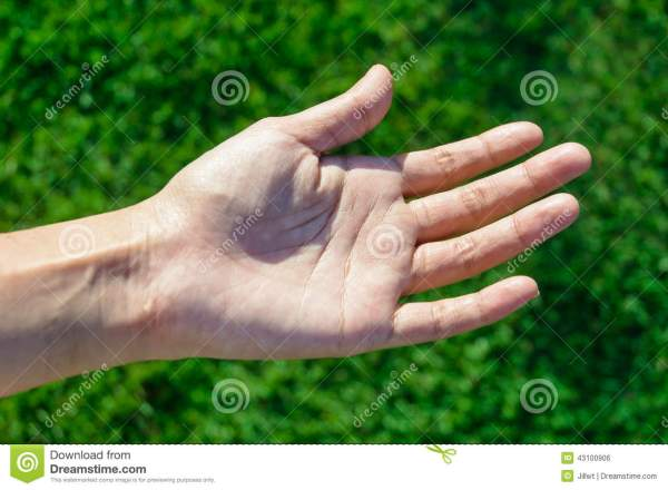 Girl left hand stock photo. Image of texture, female ...