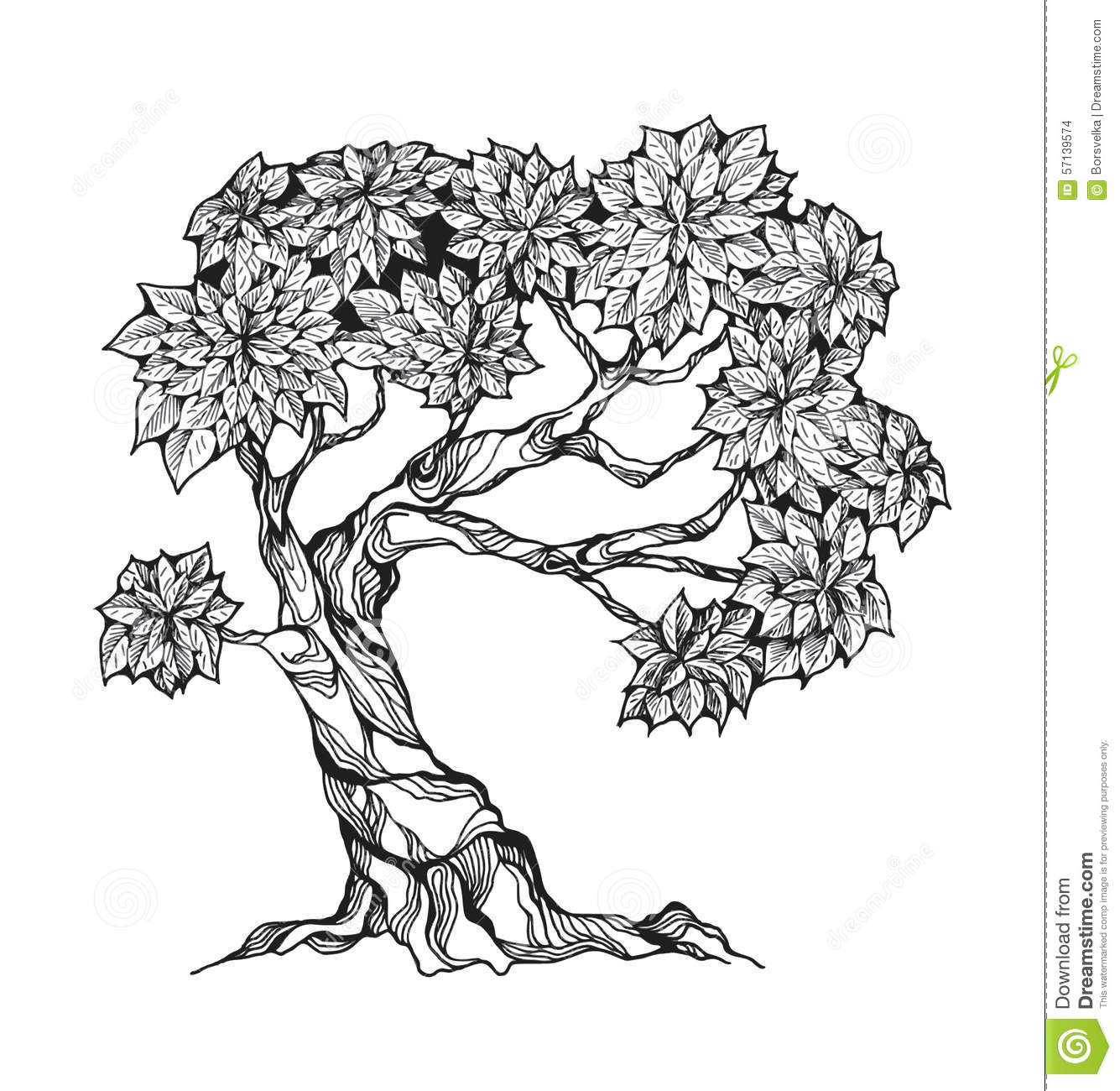 Gnarled Tree With Leaves Stock Vector Illustration Of