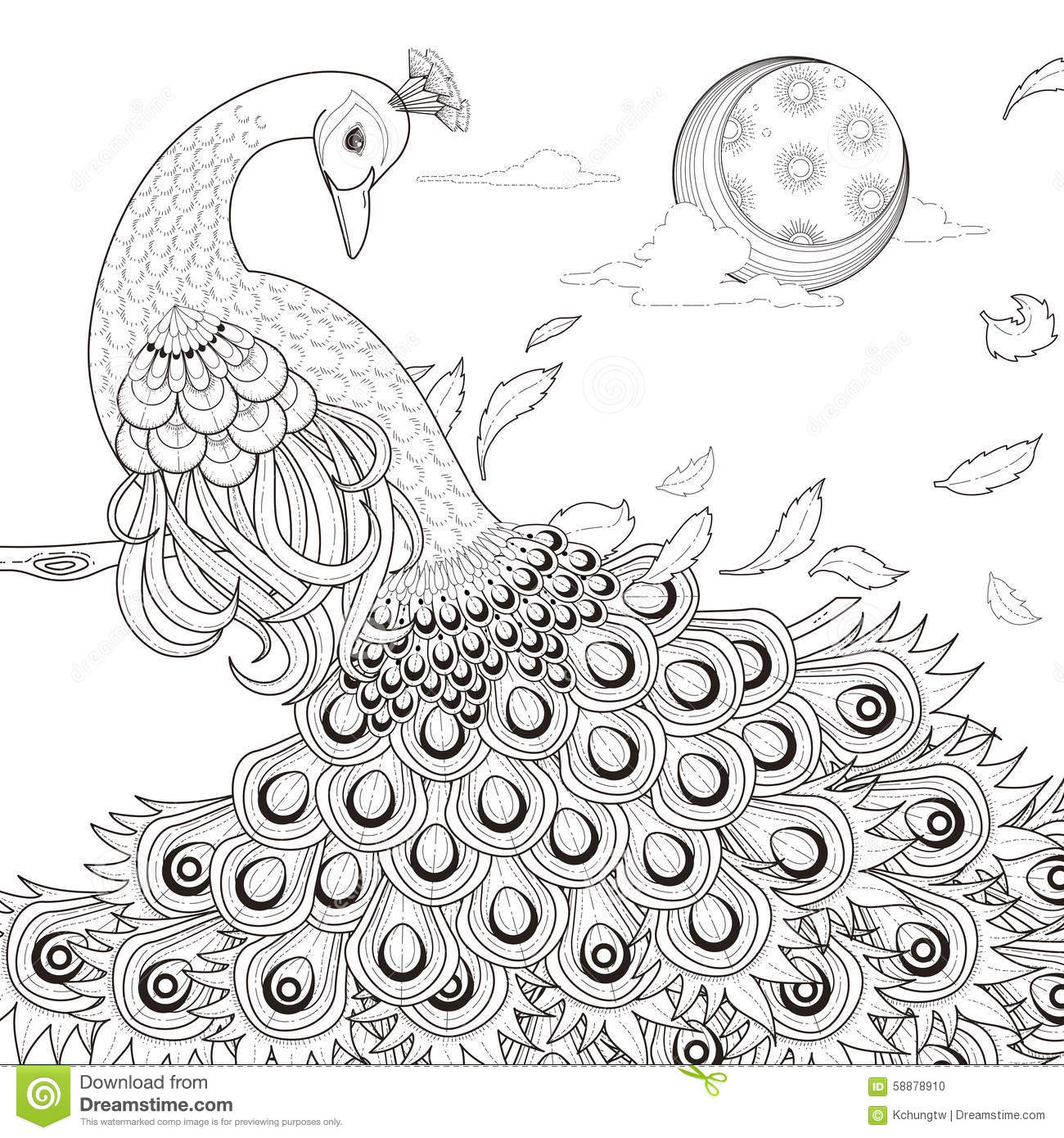 Graceful Peacock Coloring Page Stock Vector