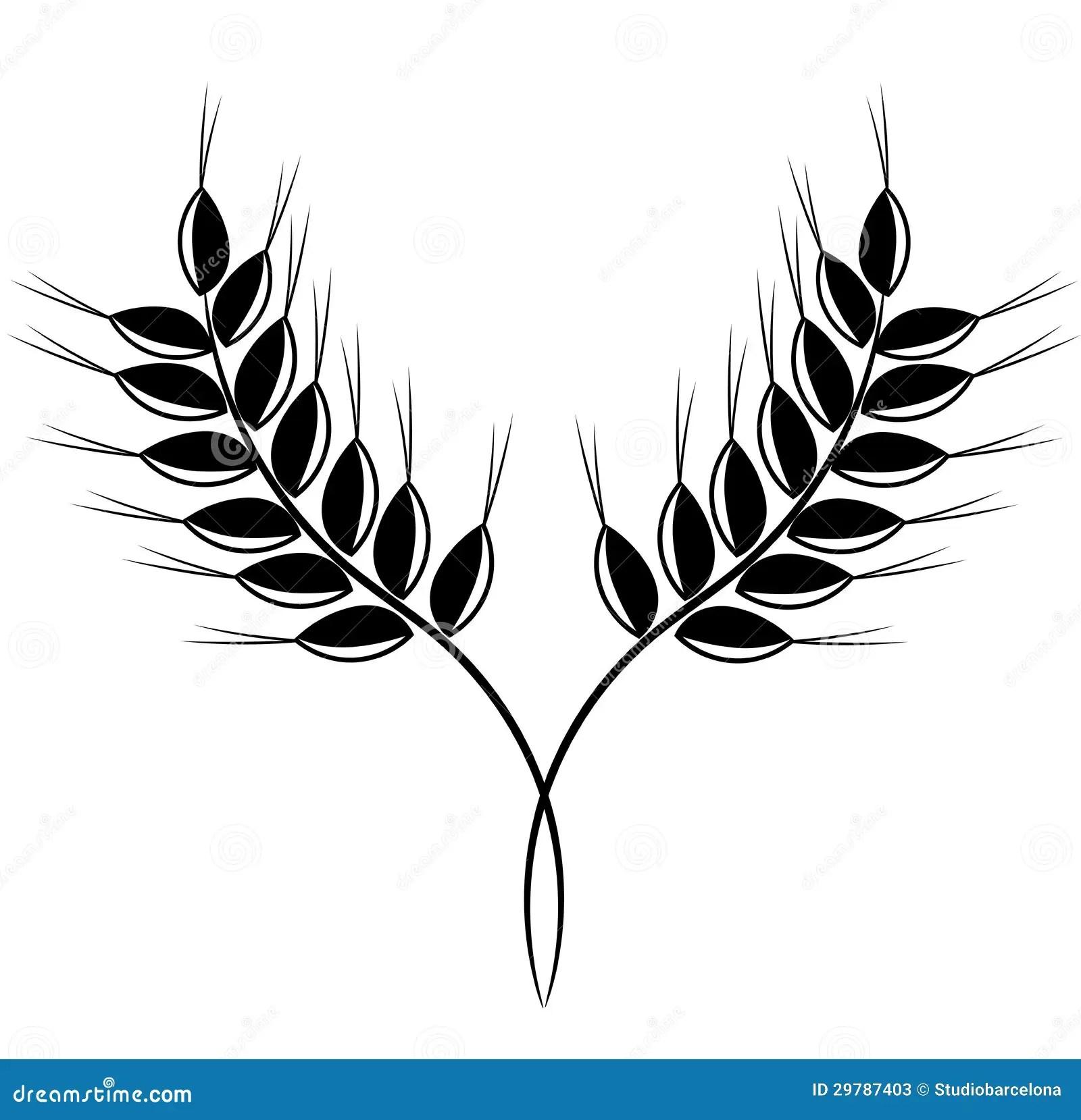 Grain Ears Stock Vector Illustration Of Illustration