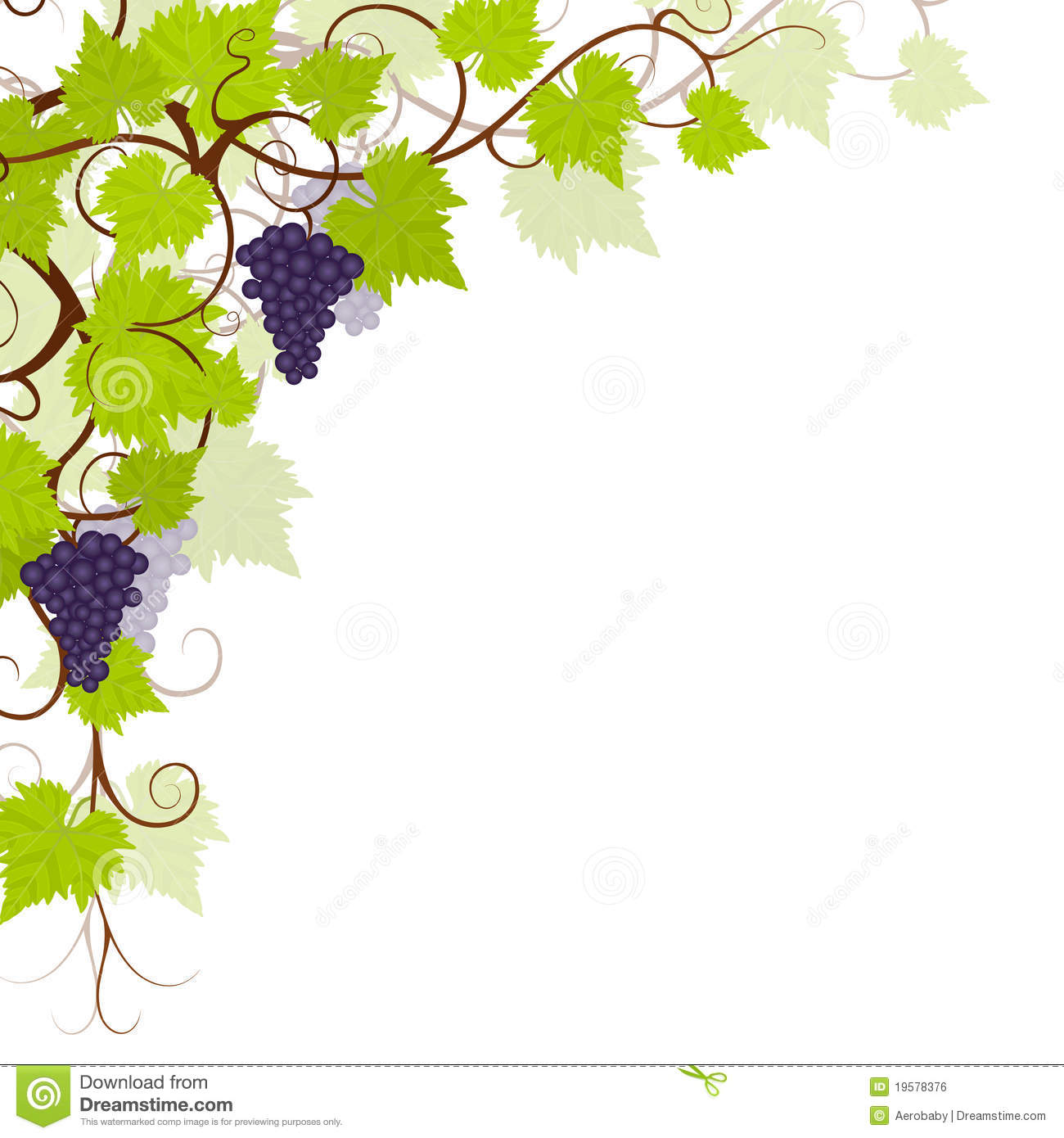 Grape Vines Background Frame Royalty Free Stock Image