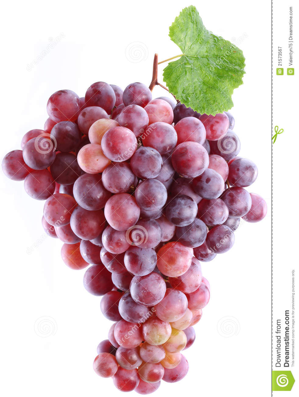 Grapes On A White Background Stock Image Image 21573567