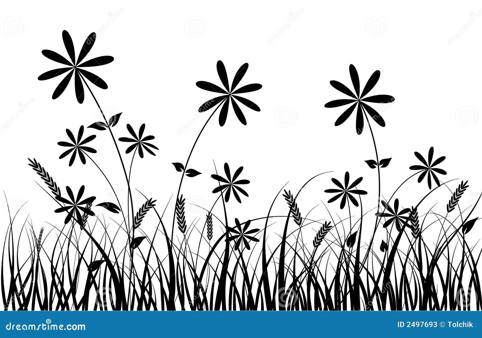 Gras En Bloem Vector Vector Illustratie Illustratie