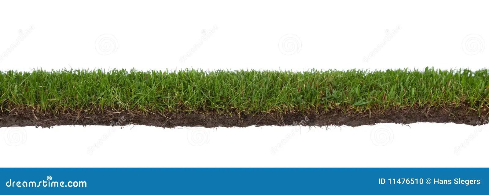 Art Free Roots Dirt Clip