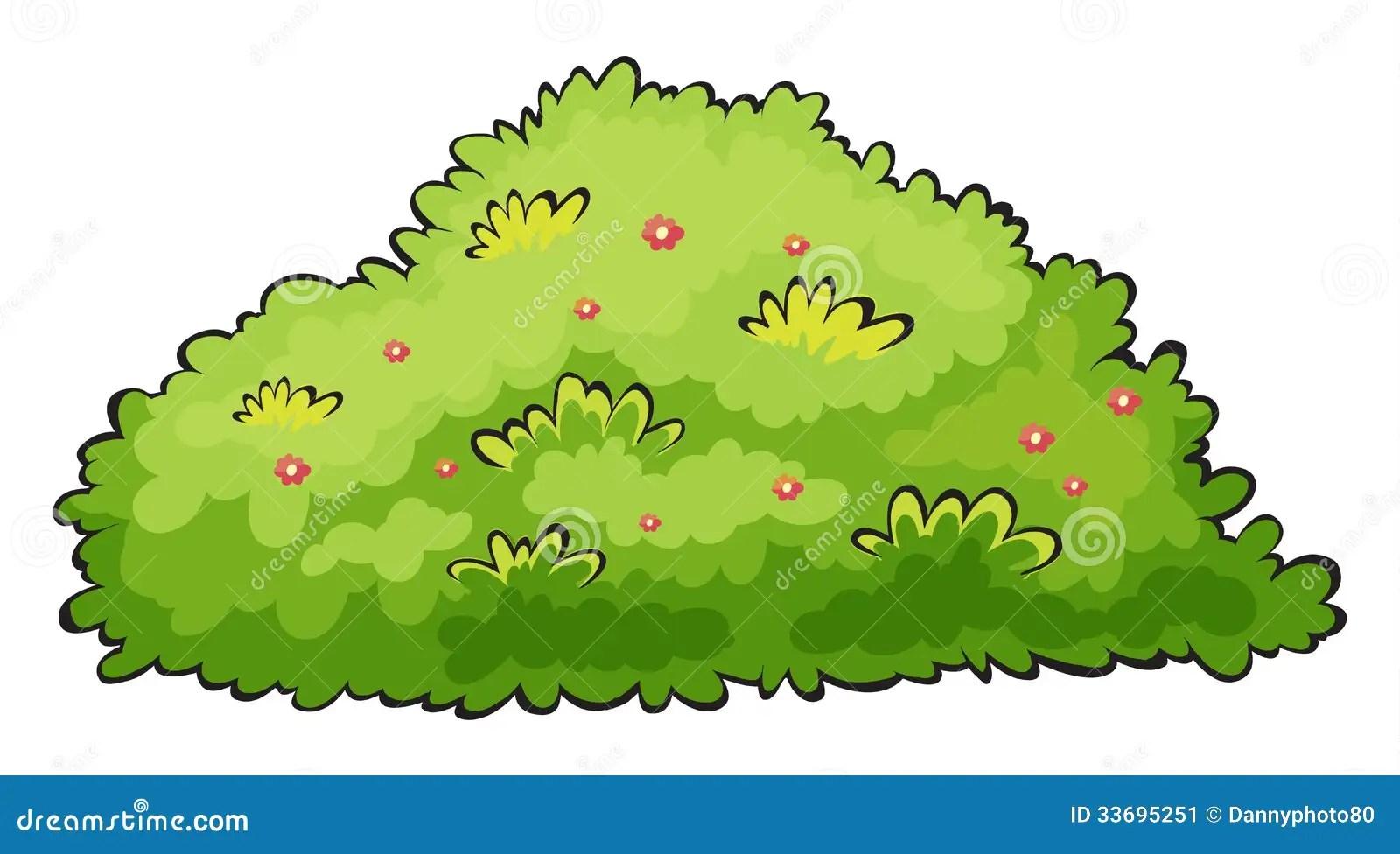 Green Bush Stock Vector. Illustration Of Art, Bush, Black