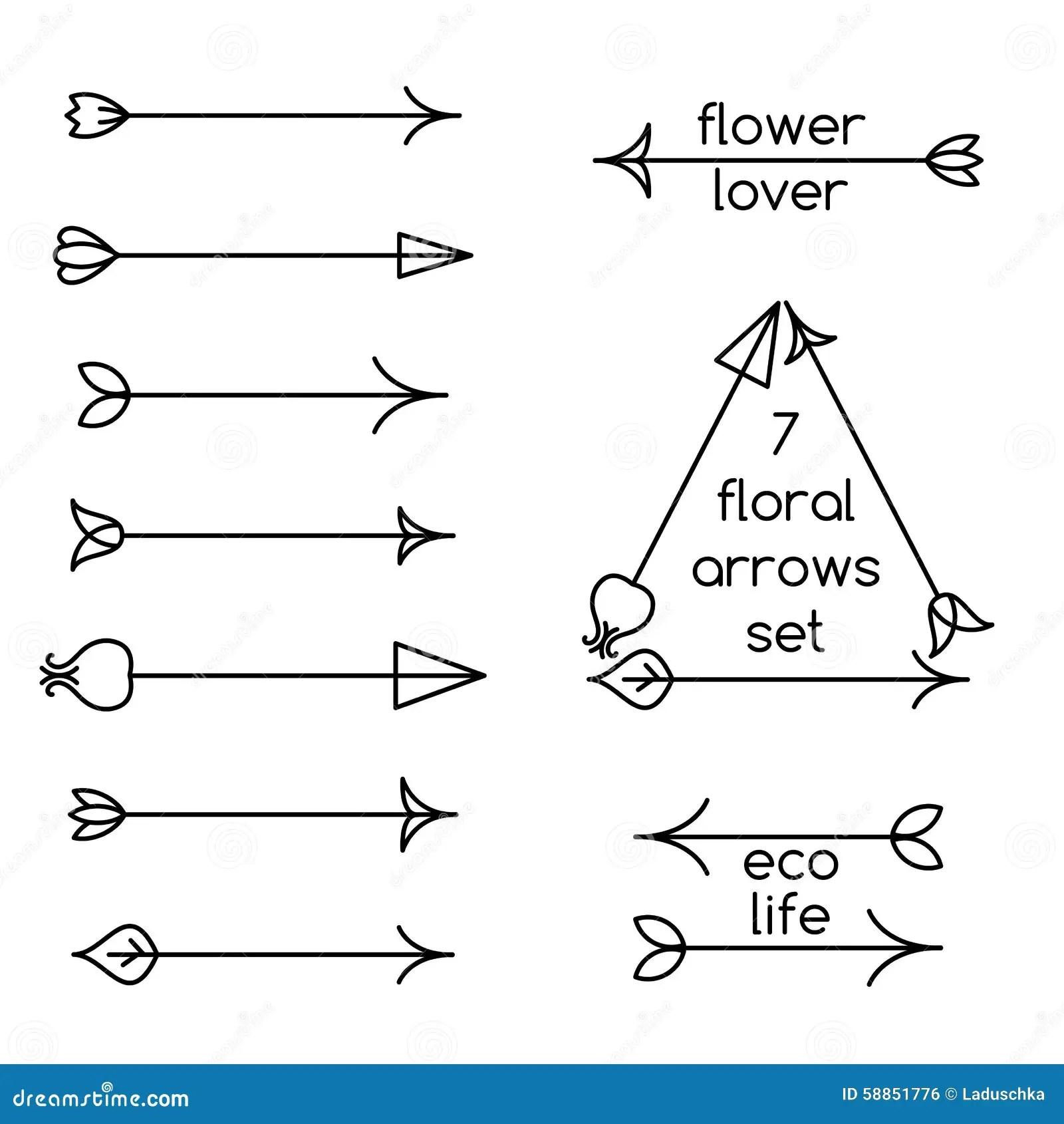 Grupo De Linha Floral Arte Das Setas E De Exemplos Do