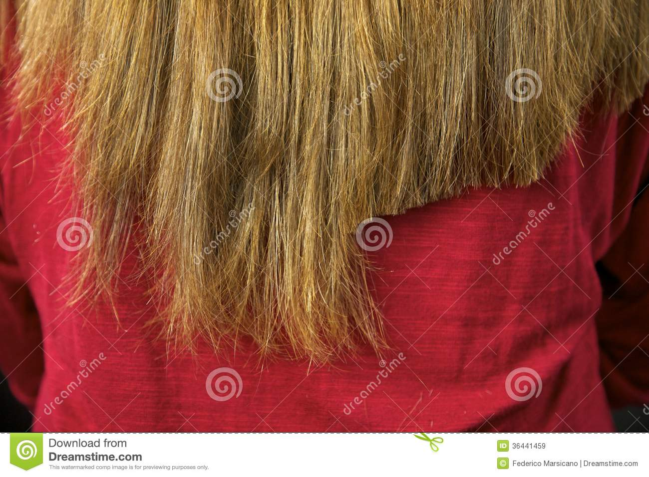 Half Hair Being Cut Straight Royalty Free Stock Images
