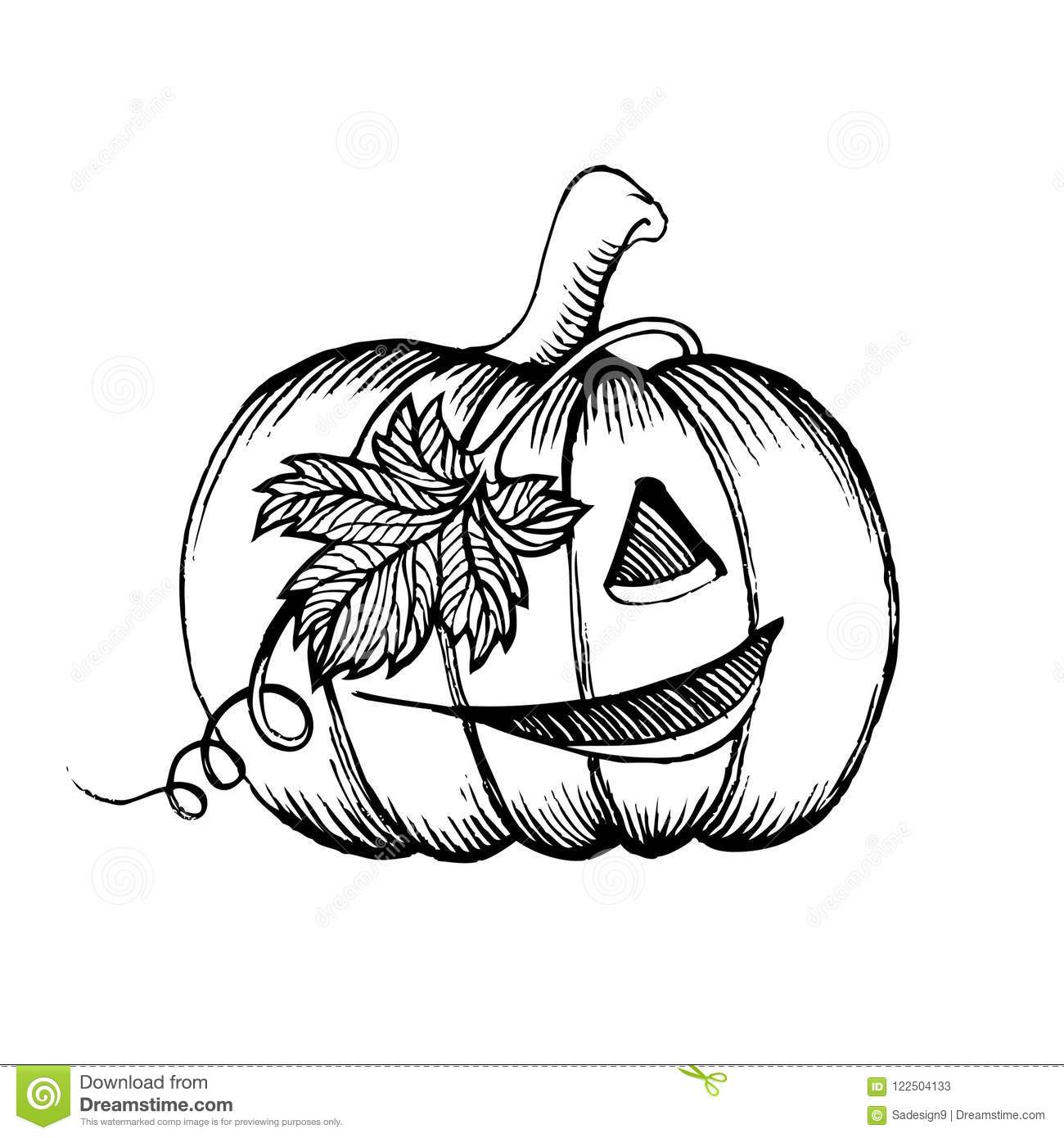 Halloween Pumpkin Sketch Drawing With Leaves Pirate