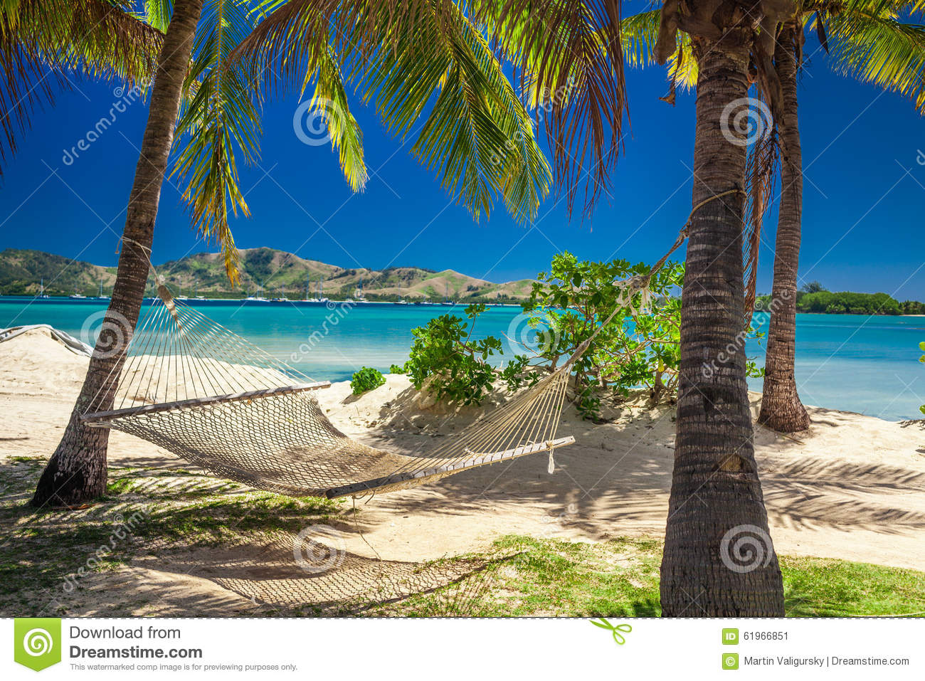 Hammock In The Shade Of Palm Trees On A Beach Stock Photo
