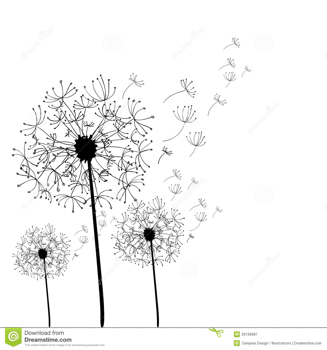 Hand Drawn Dandelion Isolated Stock Vector