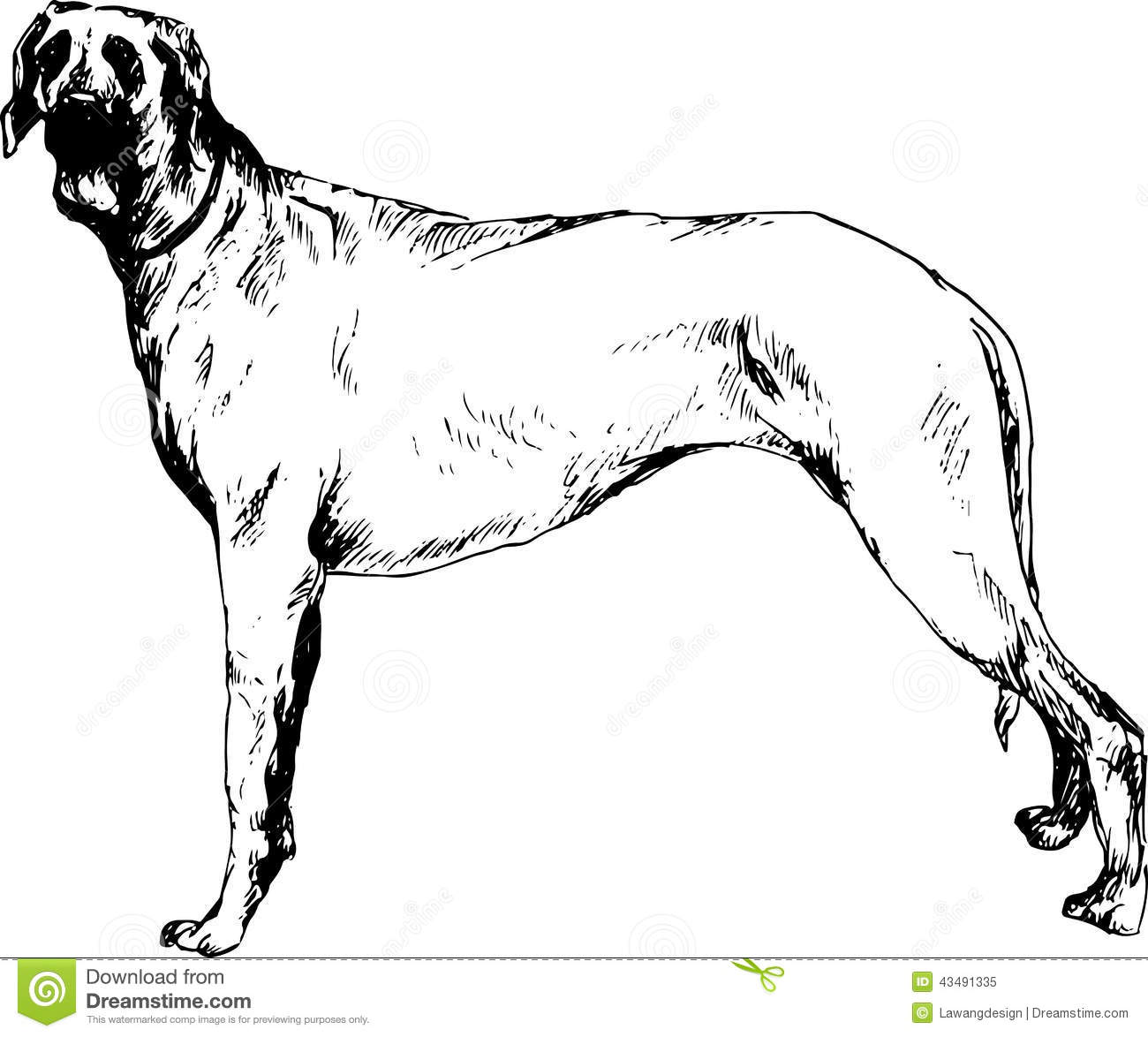Hand Drawn Dog Stock Vector