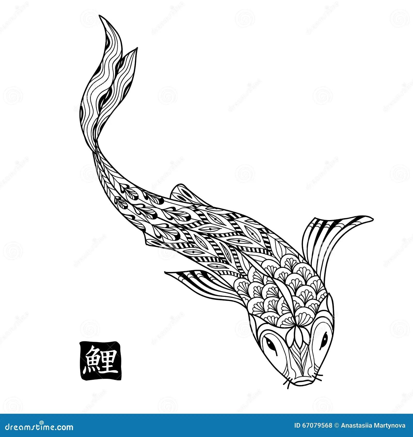 Hand Drawn Koi Fish Japanese Carp Line Drawing For