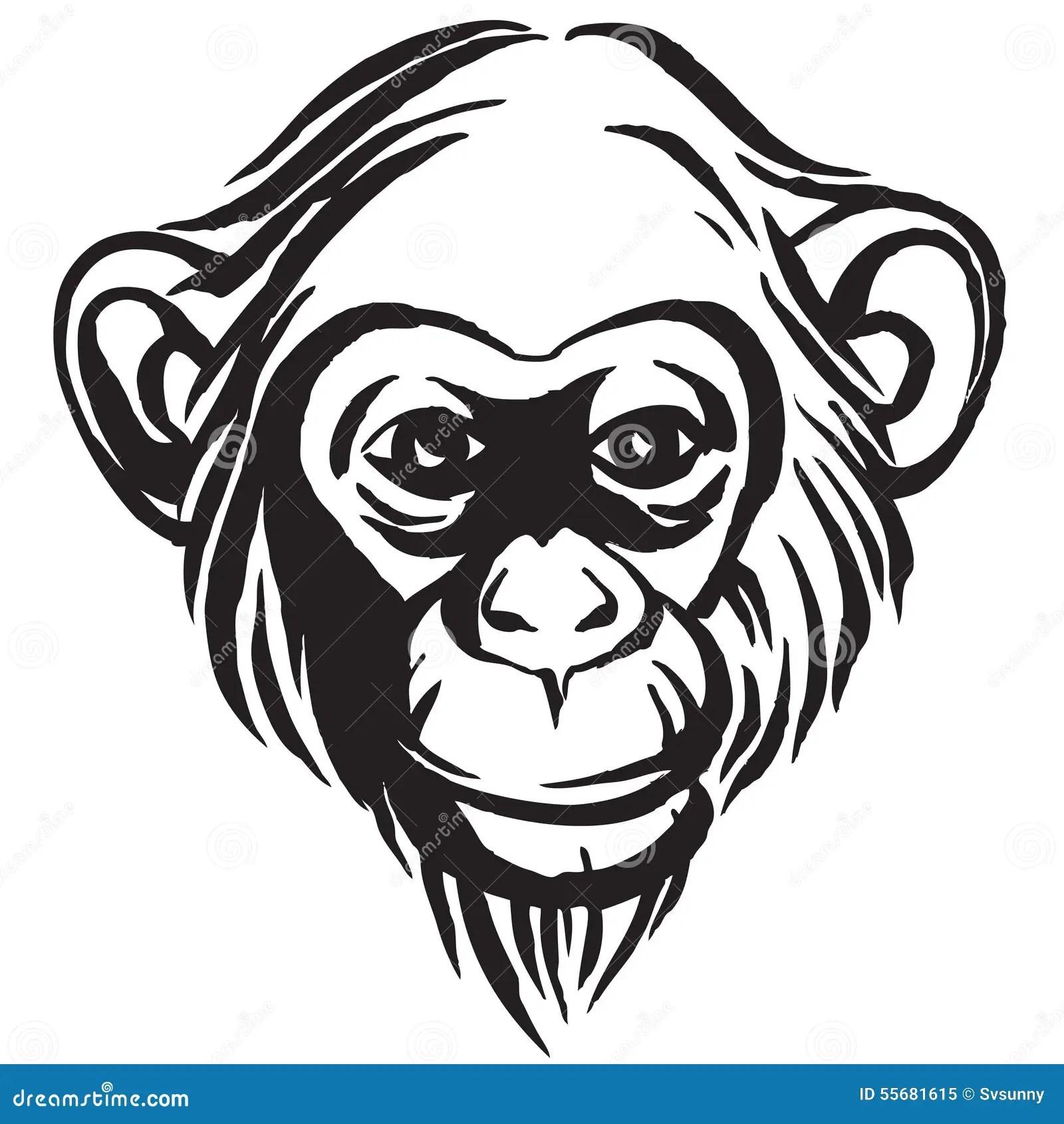 Hand Drawn Portrait Of Monkey Chimpanzee Black And White
