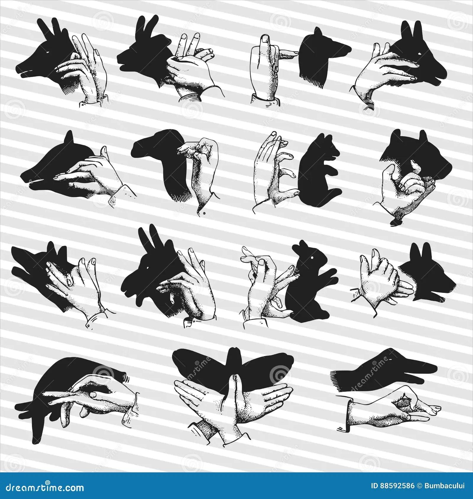Hand Shadow Animal Puppets Illustrations Stock