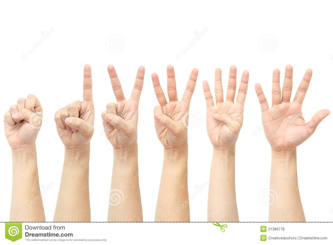 Hands Counting Stock Photo Image Of Finger Skin Four