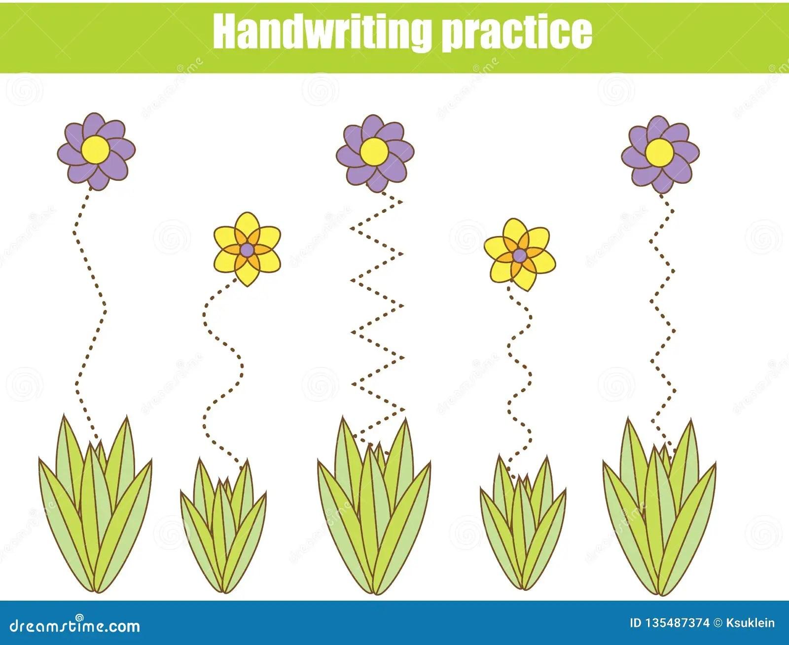 Flower Basics Worksheet Answers