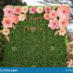 Happy Birthday Floral Hedge Wall Board Backdrop Stock Photo Image Of Flower Greeting 205593710