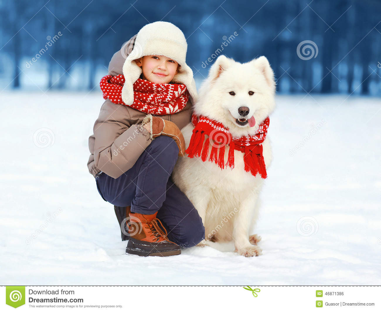 Happy Teenager Boy Walking With White Samoyed Dog Outdoors