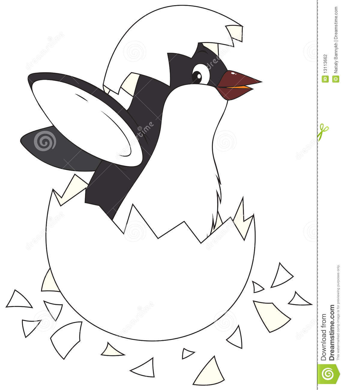 Hatching Penguin Stock Photography