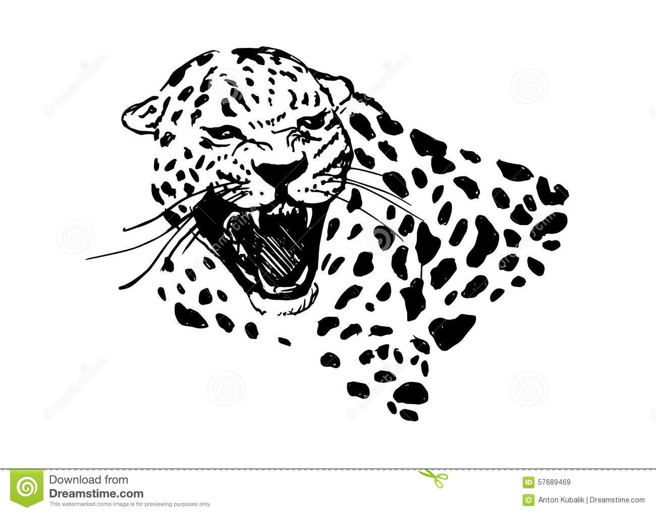 Head Of Roaring Jaguar Stock Vector Illustration Of Threatened