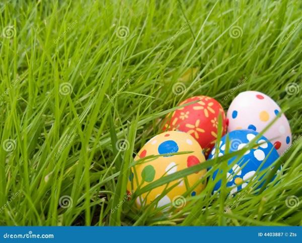 Hidden easter eggs stock image. Image of hidden, beautiful ...