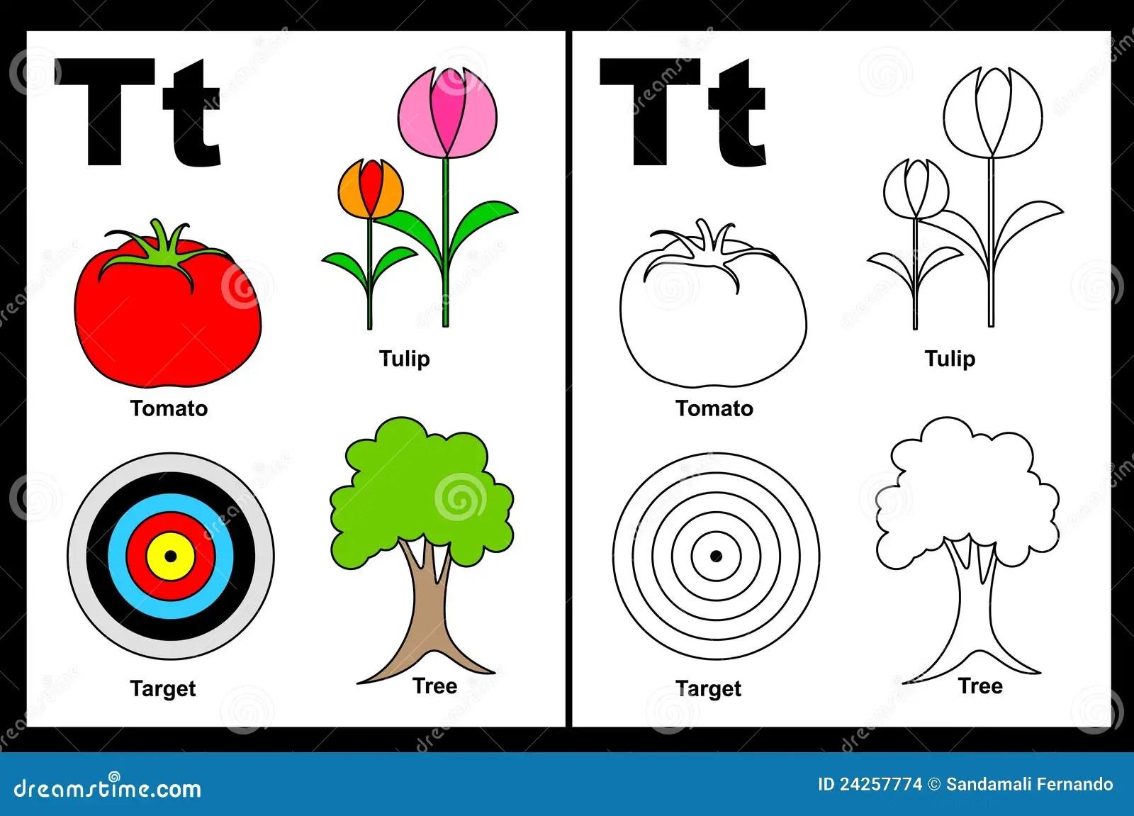 Hoja De Trabajo De La Letra T Ilustracion Del Vector