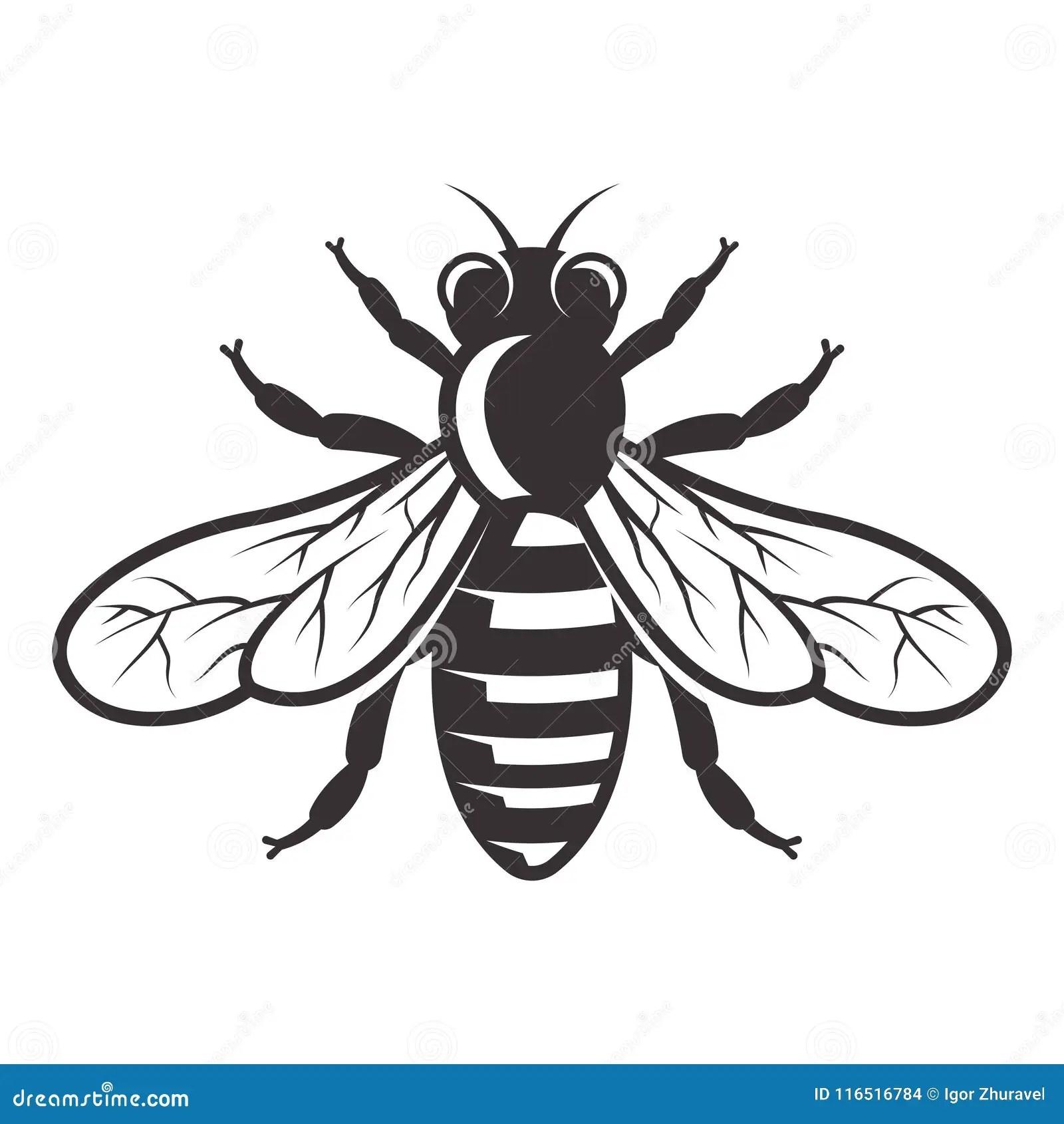 Honey Bee Vector Monochrome Style Illustration Stock