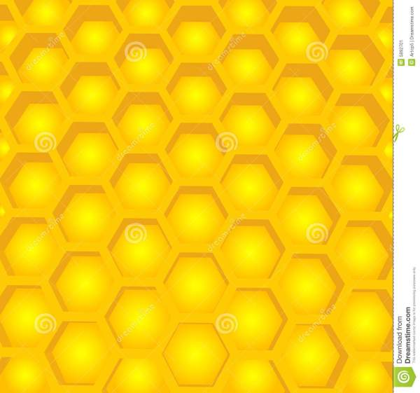 Honey Cell Structure Stock Image Image 5892701