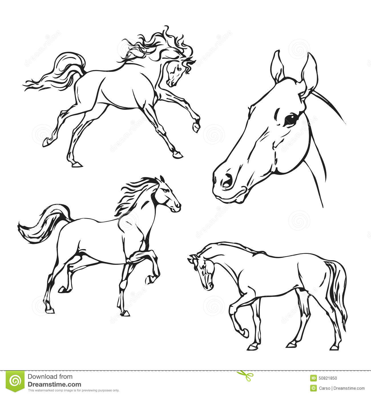 Horse B Amp W Vector Drawing Stock Vector