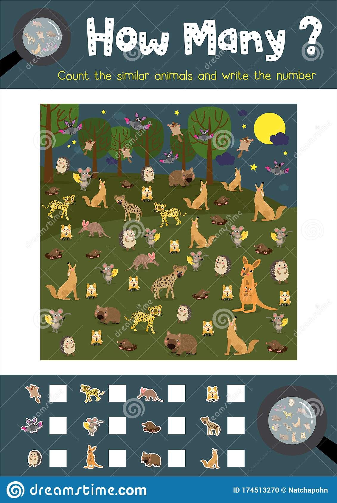 How Many Nocturnal Animal Stock Vector Illustration Of