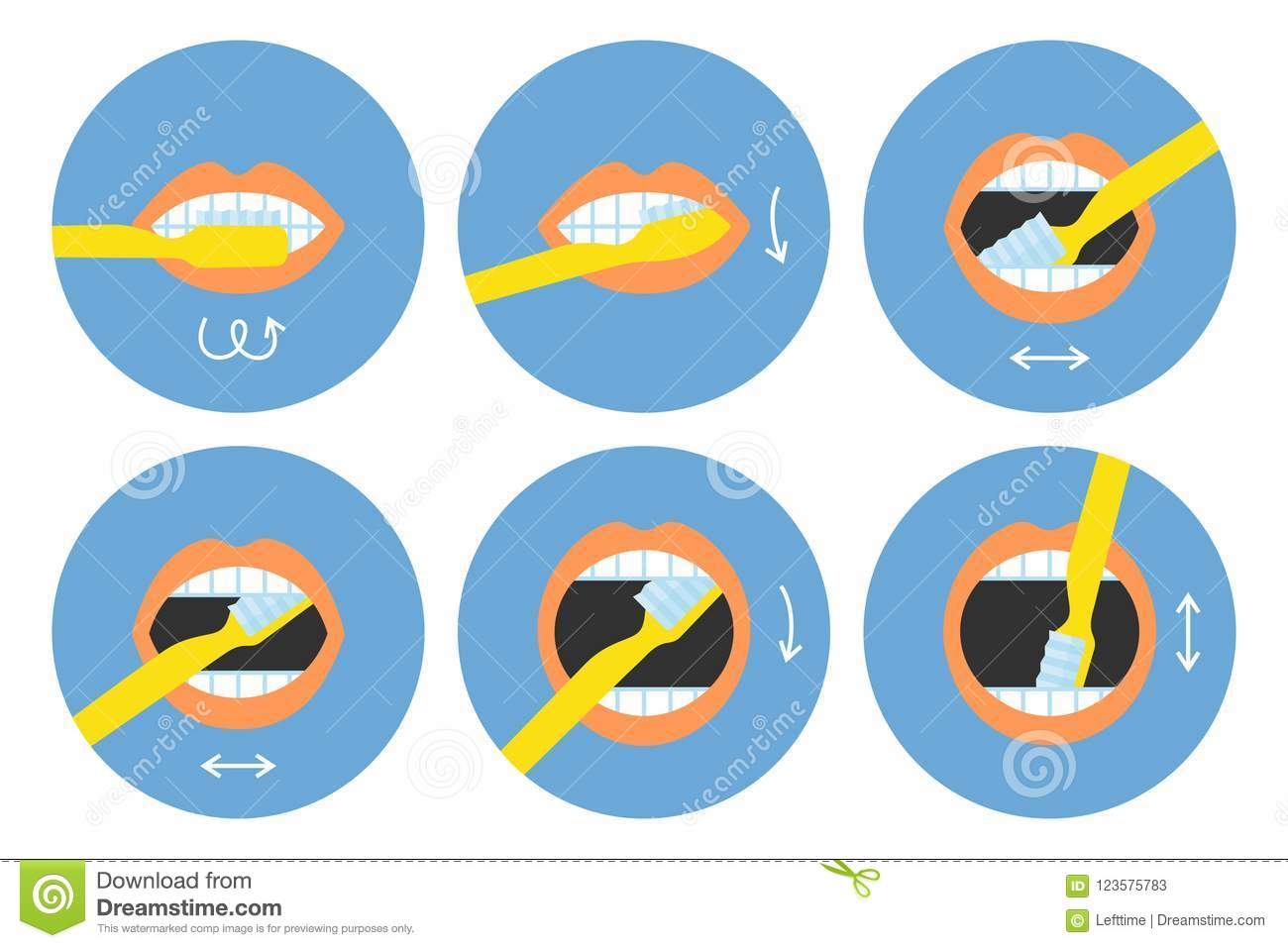 How To Brush Your Teeth Instructions 6 Steps Stock Vector
