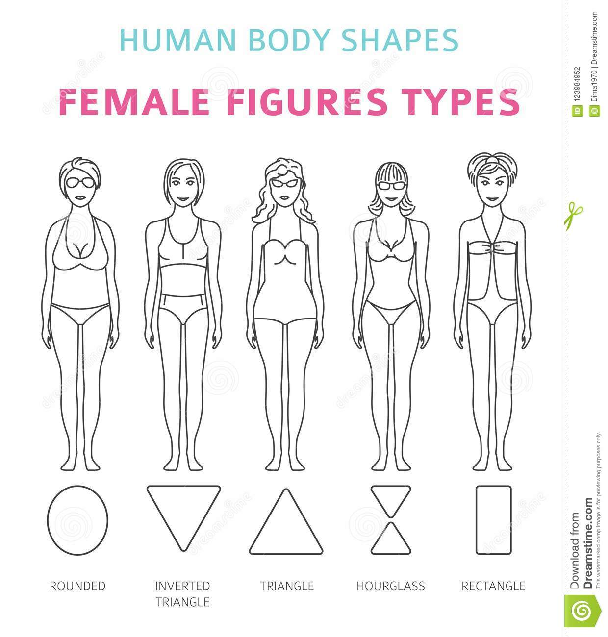 Human Body Shapes Female Figures Types Set Simple Line