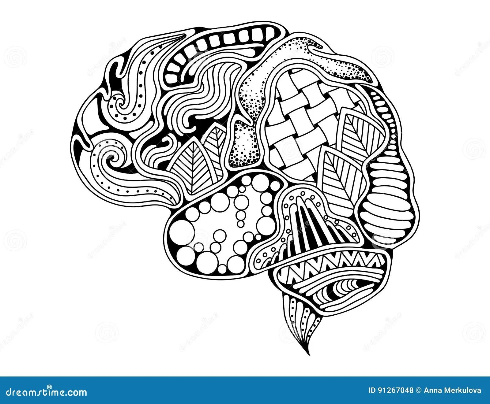 Human Brain Doodle Decorative Curves Creative Mind Stock