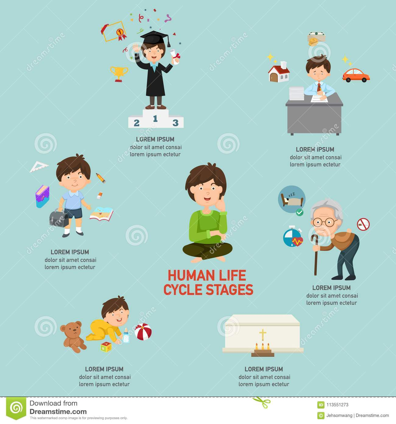 Human Life Cycle Stages Infographic Stock Vector