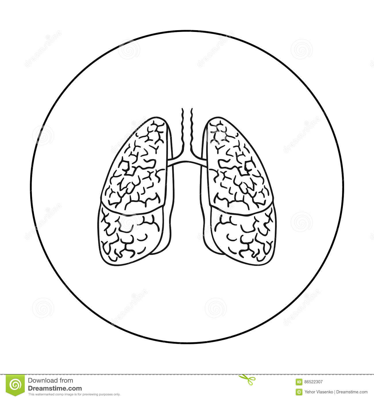 Human Lungs Icon In Outline Style Isolated On White